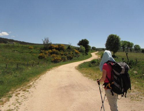How Much Does the Camino de Santiago Cost?