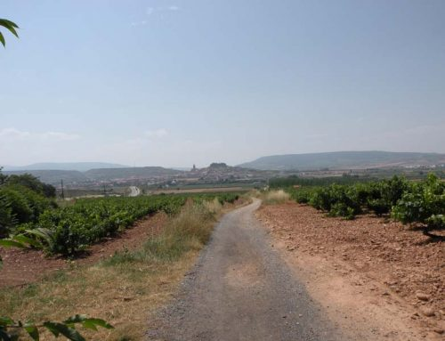 Camino de Santiago is A Journey For the Masses