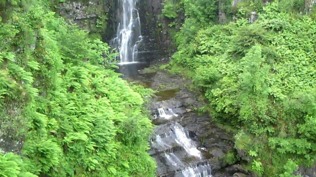 Glenashdale Falls