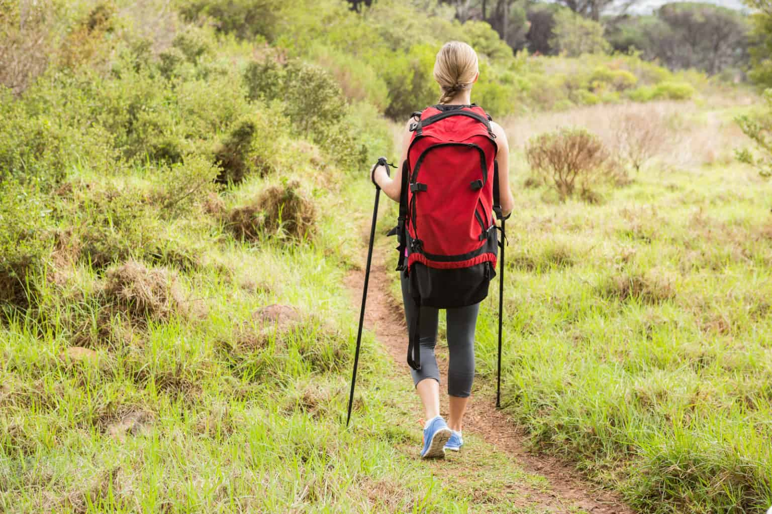 carbon fiber trekking or aluminum trekking poles