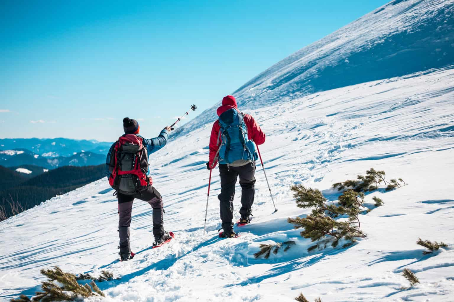 Best Patagonia Winter Jackets