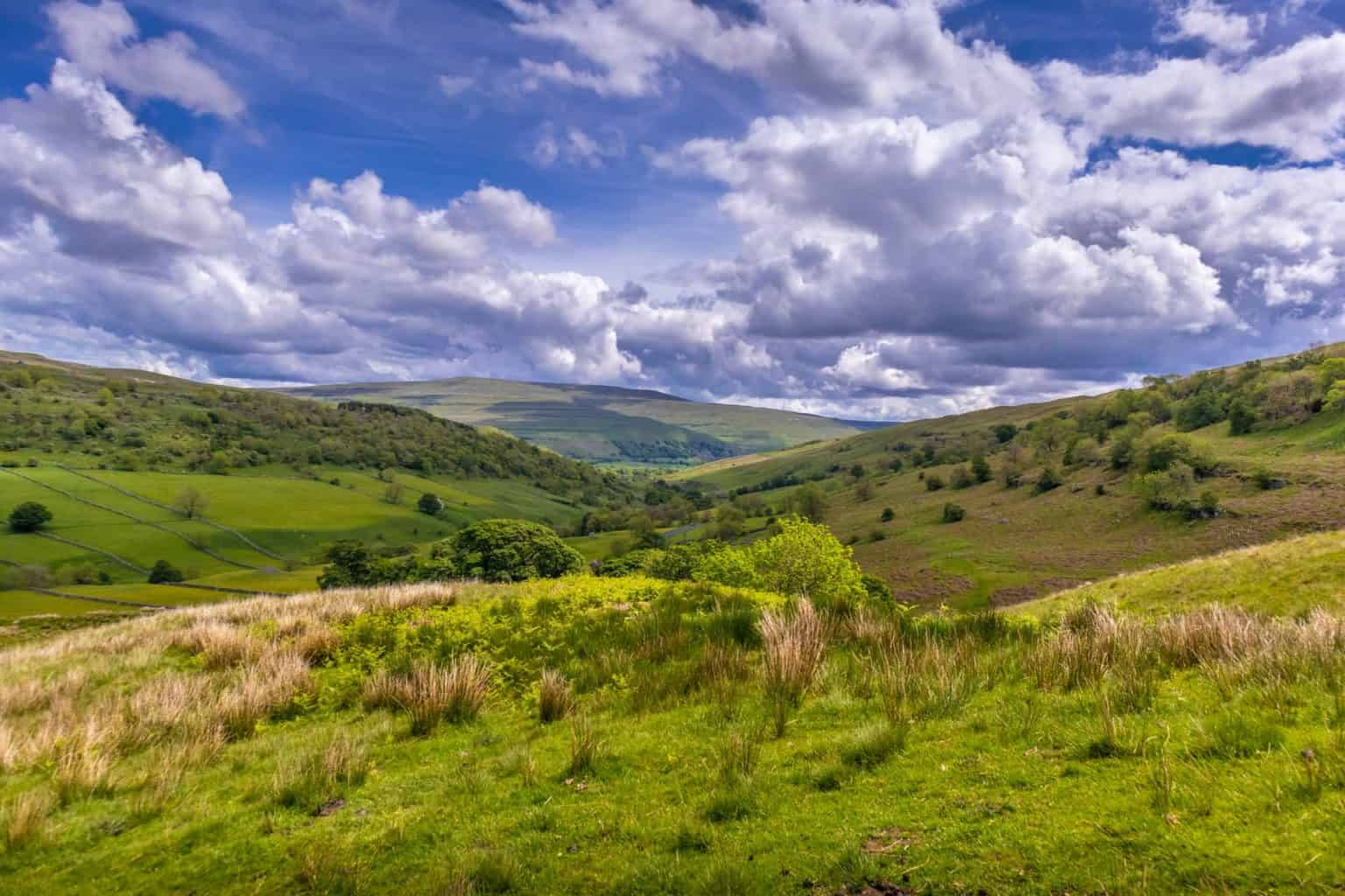 Yorkshire Dales Park in the Summer