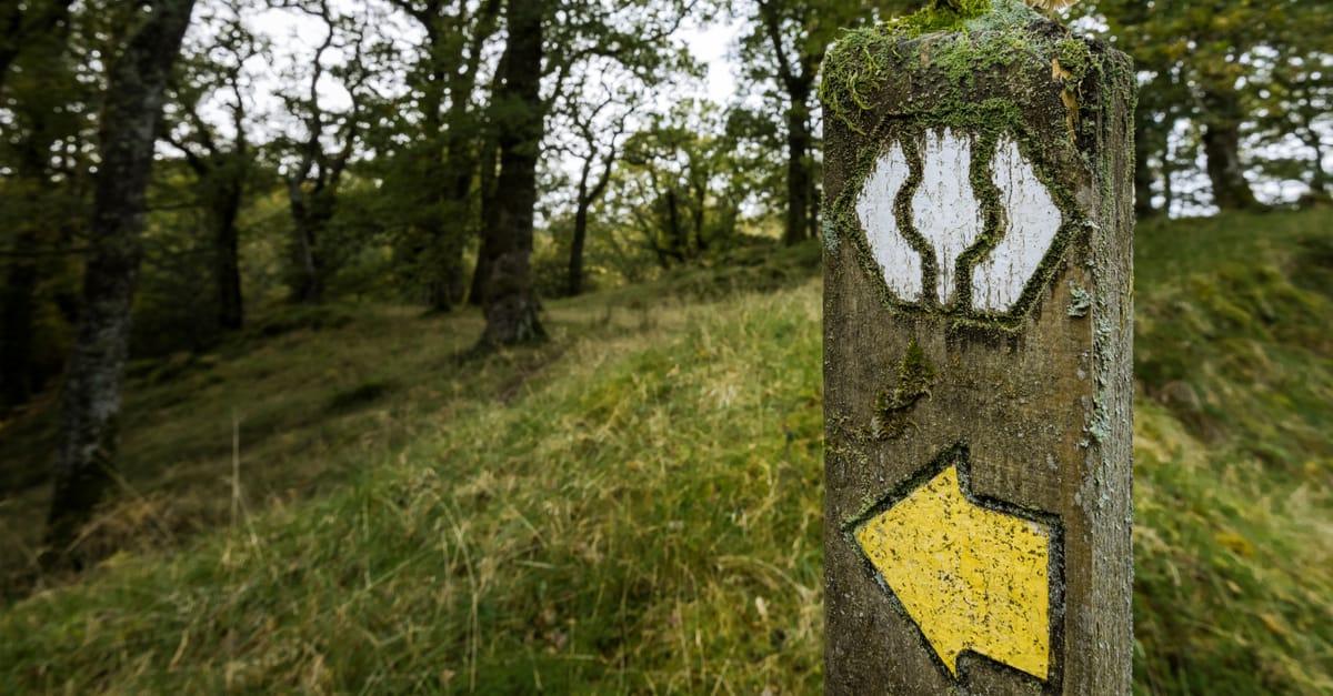 Waymark on the Southern Upland Way