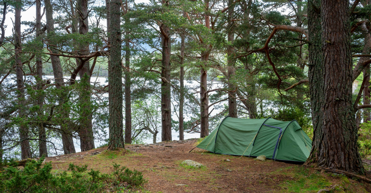 Wild camping in Cairngorms National Park